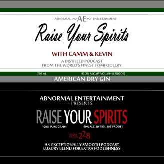 Raise Your Spirits with Camm & Kevin - album art