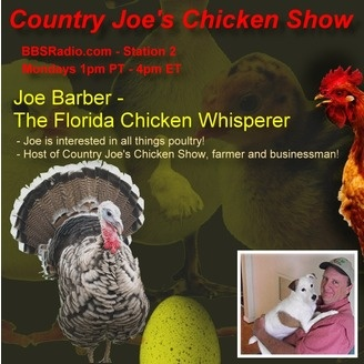 Country Joes Chicken Show with Joe Barber - album art