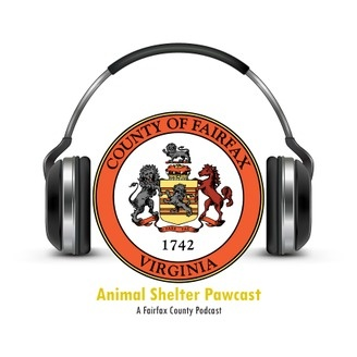 Animal Shelter Pawcast - album art